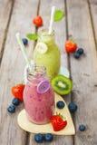 Frullati mescolati freschi della frutta in bottiglie per il latte d'annata Immagini Stock Libere da Diritti