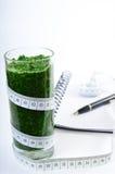 Frullato degli spinaci Dieta e disintossicazione Fotografie Stock Libere da Diritti