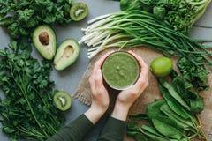 Frullato delizioso della minestra dell'alimento verde Immagine Stock Libera da Diritti