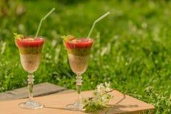 Frullato della frutta in vetri di vino di vetro Fotografia Stock Libera da Diritti