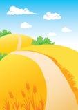 frumento di paesaggio dei campi illustrazione di stock