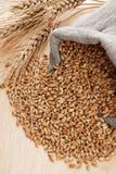 Frumento ed il sacchetto sparso con un granulo Fotografie Stock Libere da Diritti