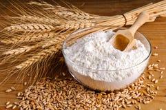 Frumento, granulo e farina immagine stock libera da diritti