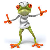 Frun frog Stock Photography
