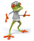 Frun frog Royalty Free Stock Photography
