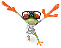 Frun frog Royalty Free Stock Images