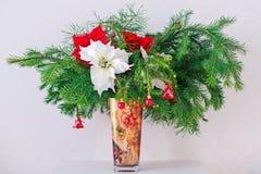 Frunchgranträd med den unga kotten och julstjärnan in Arkivbilder
