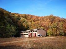 Fruska Gora. Autumn colours in Fruska Gora stock images