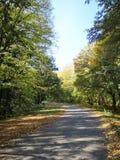 Fruska Gora. Autumn colours in Fruska Gora stock photography