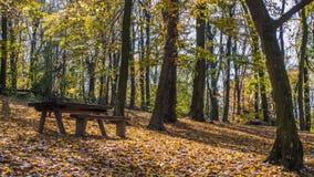 Fruska Gora park narodowy Fotografia Royalty Free