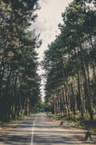 Fruska gora park narodowy, Serbia Obrazy Royalty Free