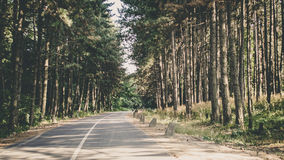Fruska gora park narodowy, Serbia Zdjęcia Stock