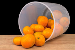 Frustrate bucket of bad mandarins Stock Images