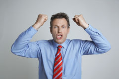 Frustrated Businessman Screaming Royalty Free Stock Images