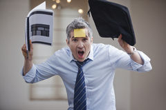 Frustrated businessman shouting Royalty Free Stock Image