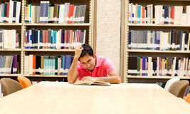 Frustrated male student Royalty Free Stock Image