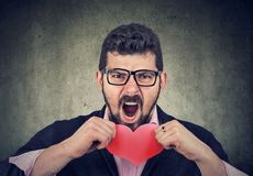 Frustrated man tearing up a red heart. Frustrated young man tearing up a red heart and screaming royalty free stock images