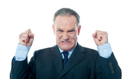 Frustrated senior businessman Royalty Free Stock Photo