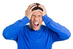 Frustrated young man squeezing his head, going nuts, screaming Royalty Free Stock Image
