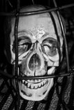Frustrating skull in cage after torture Stock Photos