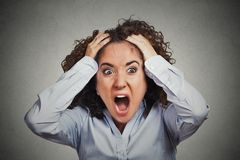 Frustrerad chockad affärskvinna som drar hår som skriker ut Royaltyfri Bild