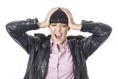 Frustrierte verärgerte betonte junge Frau, die mit ihren Händen auf ihrem Kopf in der Verzweiflung schreit Lizenzfreie Stockbilder
