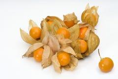 Fruta 1 del Physalis fotografía de archivo