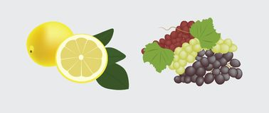 Fruta stock de ilustración