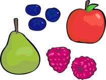 Fruta ilustração royalty free