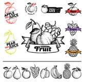 Fruta libre illustration