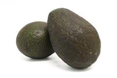 Fruta - abacate Imagem de Stock