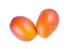 Fruta aislada del mango Imagen de archivo
