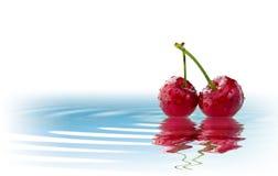 Fruta aislada en el agua Imagen de archivo libre de regalías