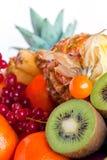 Fruta Assorted fotografia de stock royalty free
