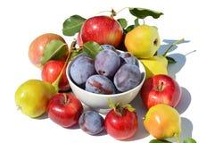 Fruta Assorted no fundo branco Foto de Stock