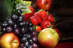 Fruta brillante jugosa, asperjada con agua, aún la vida de frutas estacionales y las bayas Fotos de archivo