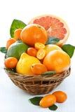Fruta cítrica. Fotos de archivo
