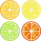 Fruta cítrica libre illustration