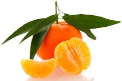 Fruta cítrica anaranjada sin pelar del mandarín con las hojas verdes y medio frescos Fotos de archivo libres de regalías