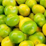 Fruta cítrica del fondo del mandarín Imagen de archivo