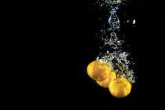 Fruta cítrica en negro Imagen de archivo libre de regalías