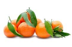 Fruta cítrica fresca, madura, aislada en el fondo blanco Imagen de archivo libre de regalías
