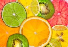 Fruta cítrica hecha excursionismo Fotografía de archivo