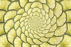 Fruta cítrica infinita Fotografía de archivo libre de regalías