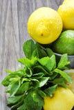 Fruta cítrica jugosa en la tabla de madera rústica - cal, limón y menta Fotos de archivo libres de regalías