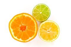 Fruta cítrica mojada Trifecta Foto de archivo libre de regalías
