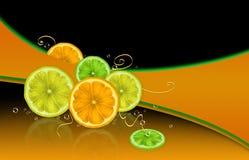 Fruta cítrica y burbujas Fotos de archivo libres de regalías