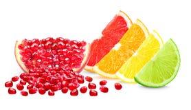 Fruta cítrica y granada Fotos de archivo