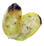 Fruta cactiforme madura de la pera espinosa Imagenes de archivo
