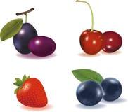Fruta combinada Fotografía de archivo libre de regalías